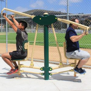 2-Person Combo Lat Pull & Vertical Press